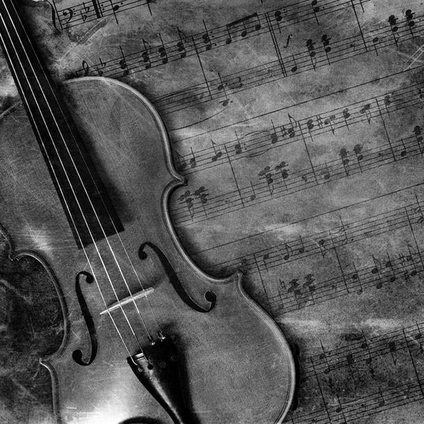 Violino Concerto